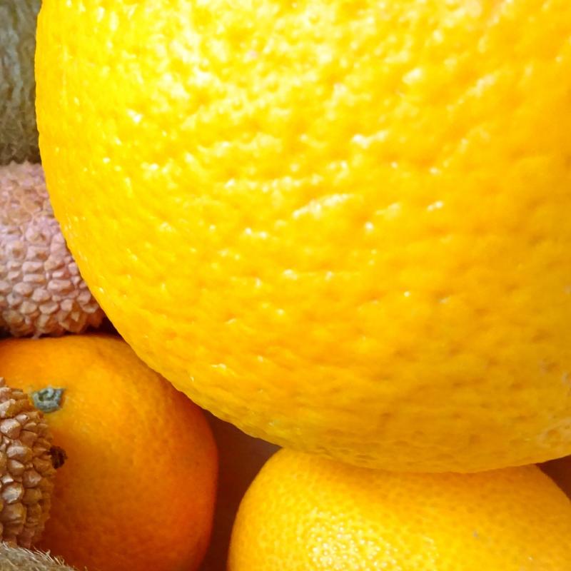 Ein Lipödem ist viel mehr als Orangenhaut, Cellulite oder ein kosmetisches Problem. Um bei eine m Lipödem abzunehmen, bedarf es  erstens einer gesicherten Diagnose durch einen Spezialisten  und zweitens einer ausgeklügelten individuellen gesunden Ernährungsstrategie.